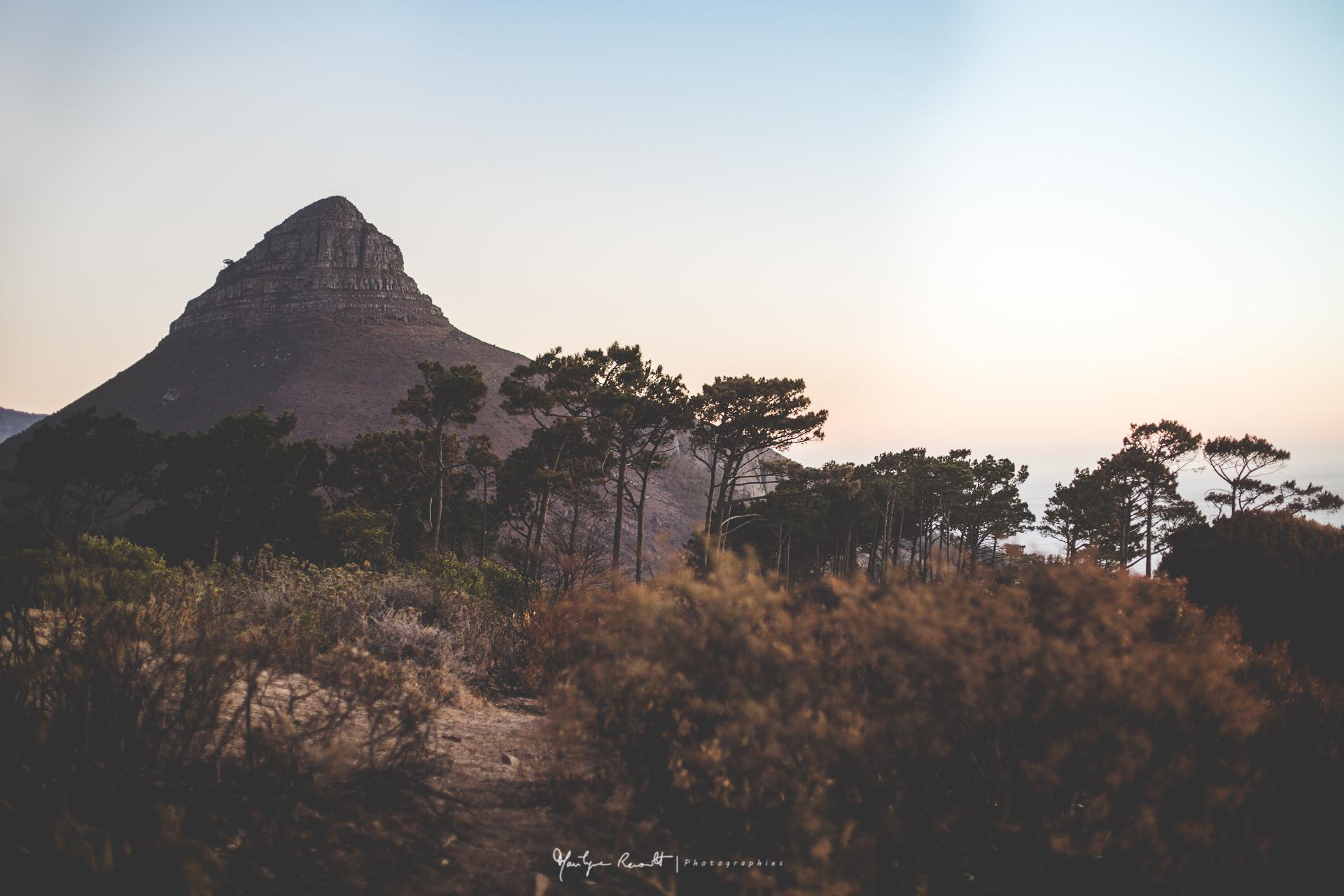 2015-04-Cape Town-23