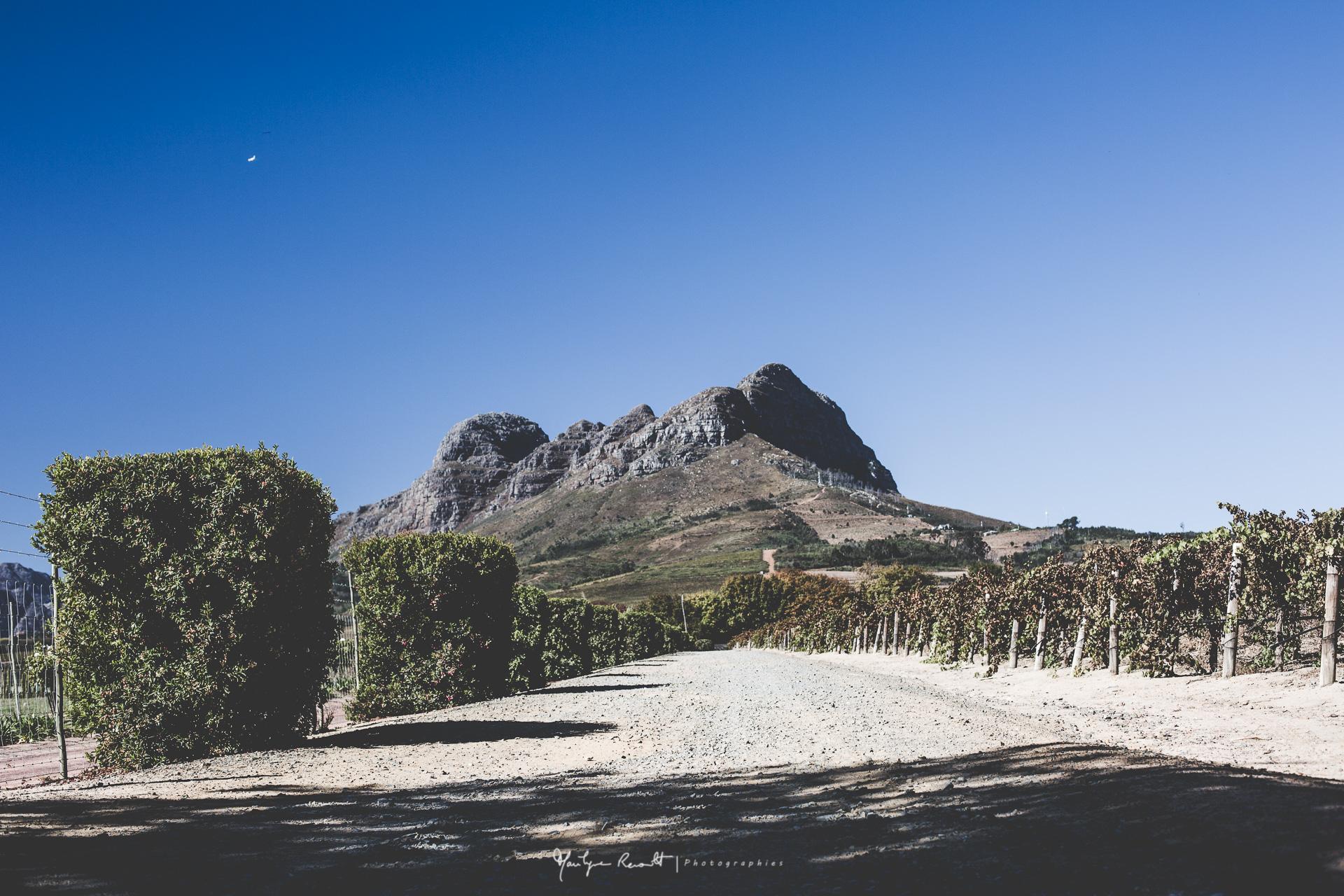 2015-04-Cape Town-34