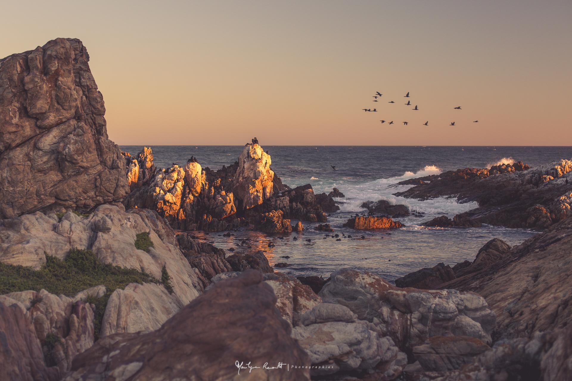 2015-04-Cape Town-37